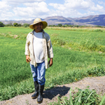 A farmer who grows rice for FMSC's GlobalPack sustainable development program
